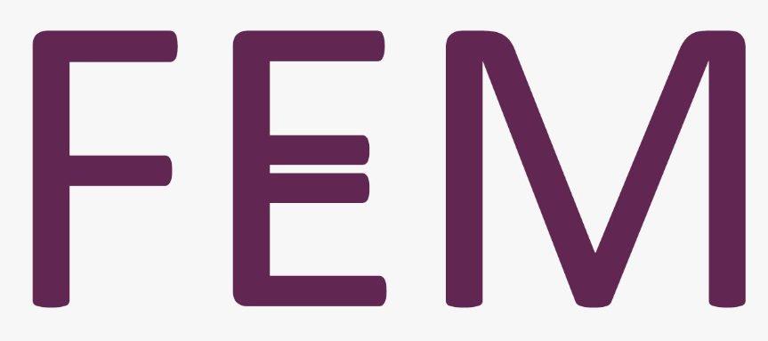FEM | De idealist op gebied van diversiteit